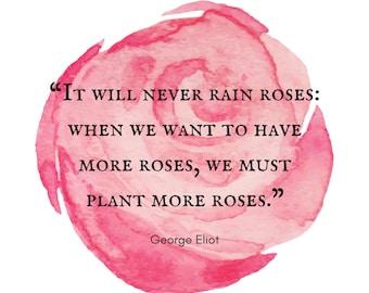 George Eliot Rose Print