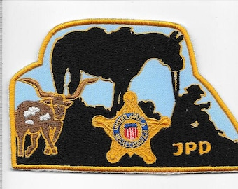 US Secret Service USSS Washington President Johnson Protective Division Agent Service Patch