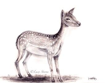 Deer.//...A4/A3 PRINT