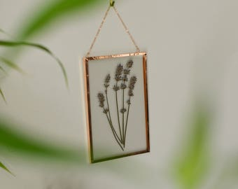 """Real pressed flower herb wall hanging   lavender   4x6"""" glass with copper edging   glass herbarium   botanical home decor"""