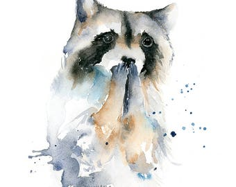 Raccoon Watercolor Fine Art Print - modern wild animal art, watercolor woodland animal art print, expressive raccoon art print