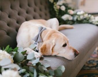 Wedding Dog Bow Tie Collar | Cat Bow Tie Collar | Black & White | Rose Gold  | Gold Metal Hardware | Wedding Dog Collar | Fancy Cat Collar