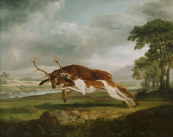 Hound Coursing a Stag by George Stubbs - Poster A3 or A4 Matt, Glossy or Art Canvas Paper