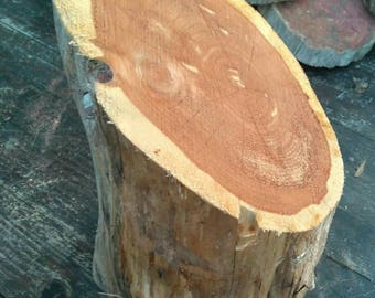 Cedar Log, Small Cedar Log, Eastern Red Cedar, Craft Supplies