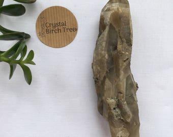 Hand dug Smoky Citrine (Australia)