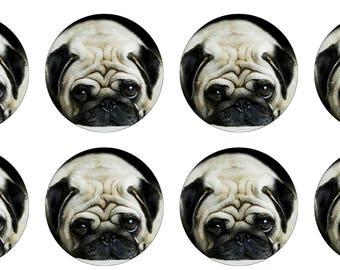 EDIBLE Pug Puppies Kittens Wafer Cupcake Toppers
