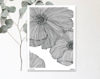 Anemone - Drawing Illustration hand - Botanic poster - print in limited and numbered - monocotyledonous