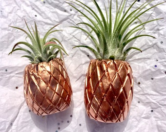 Rose Gold Air Plant Planter Pineapple