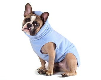 12. SKY BLUE Polartec 200 dog sweater