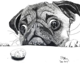 Art Print - Pen & Ink Drawing, A4 - That's MY Biscuit