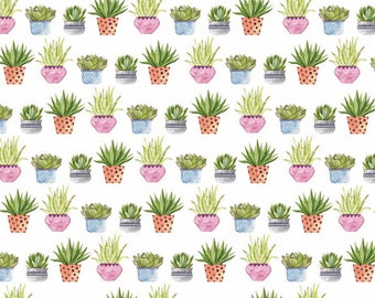 Sheet paper Scrapbooking Succulents 30.5 x 30.5 cm - duplex - paper plants Succulentes printed paper - 11002371