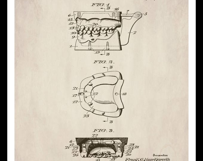 Instant Download, Dental Anatomy, Teeth Anatomical, Vintage Illustration, Dentist, Dental Office Decor, Medical Wall Art, Patent Print
