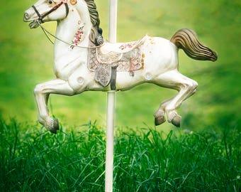 Vintage Outdoor Carousel Horse/Pony Digital Backdrop/ Digital Background / Overlay