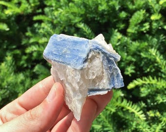 BLUE Kyanite Blades with Quartz from Brazil 10