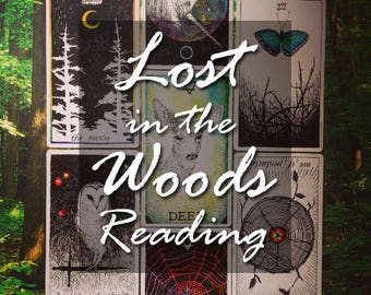 Lost In The Woods Reading