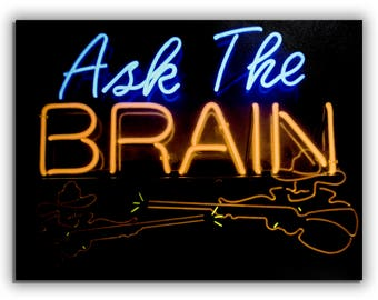 "Fine Art ""Ask The Brain"" Gallery Wrapped Canvas"