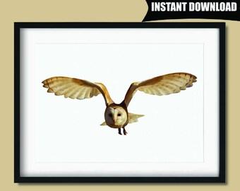 Owl Print, Owl Wall Art, Owl Wall Decor, Owl Art Nursery Decor, Nursery Prints, Nursery Art, Owl Gifts for Girls, Instant Download Art (P52)
