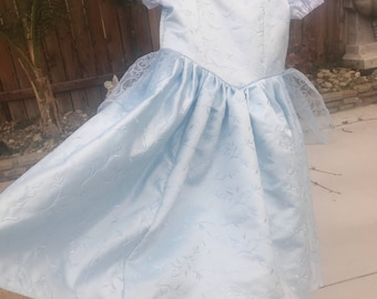 READY TO SHIP Cinderella costume dress- child 4T