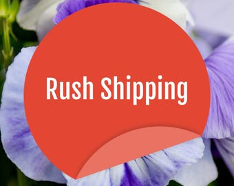 1-2 DAY RUSH Ship for Shirt/Tank ONLY