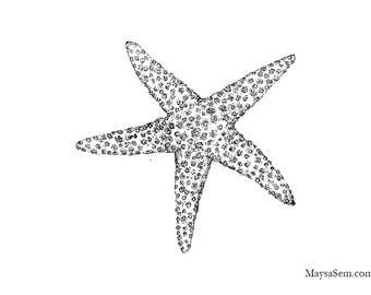 Starfish - Art Print