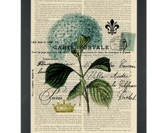 Flower Hydranger blue vintage Dictionary Art Print