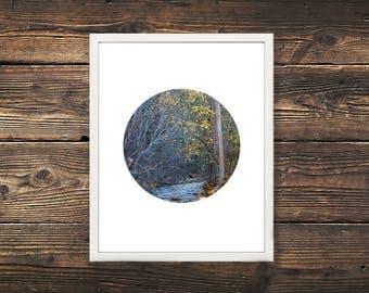 DIGITAL DOWNLOAD, Autumn Creek Photography Print, Vernon BC Print, Nature Print, Landscape, Nature Photography, Fall Photography, Canada