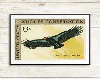 California Condor, Condor art, conservationist gift, Condor posters, Wildlife art, Conservation poster, postage stamp set, poster sets