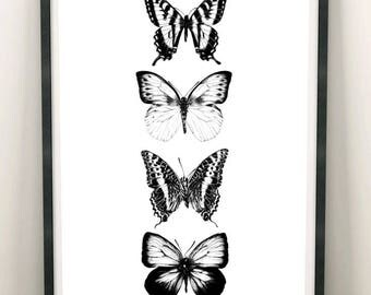 Butterfly A4 Print