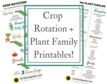 Crop Rotation + Plant Families Printable