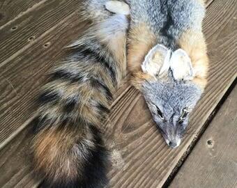 Tanned Grey Gray Fox Pelt Fur Hide Log Cabin Decor Rustic Man Cave Art