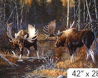 Majestic Moose Panel by Northcott Studio DP21825