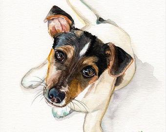 Dog puppy Jack Russel terrier begging  Fine art Print FROM original watercolor by Jennifer Redstreake