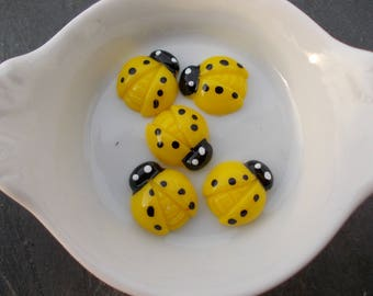 Small Stud Earrings yellow and black ladybugs in sets of two