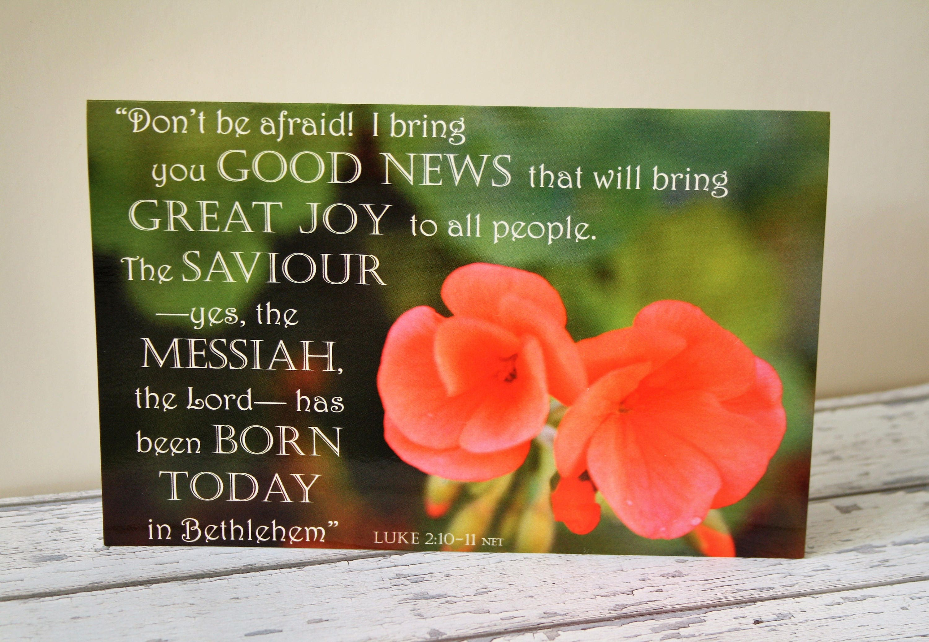 Scripture Verse Christmas Cards Set X2 Red Flower Greeting Card
