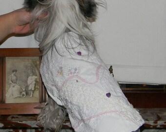 dog clothes, Chinese China dog, dog coat