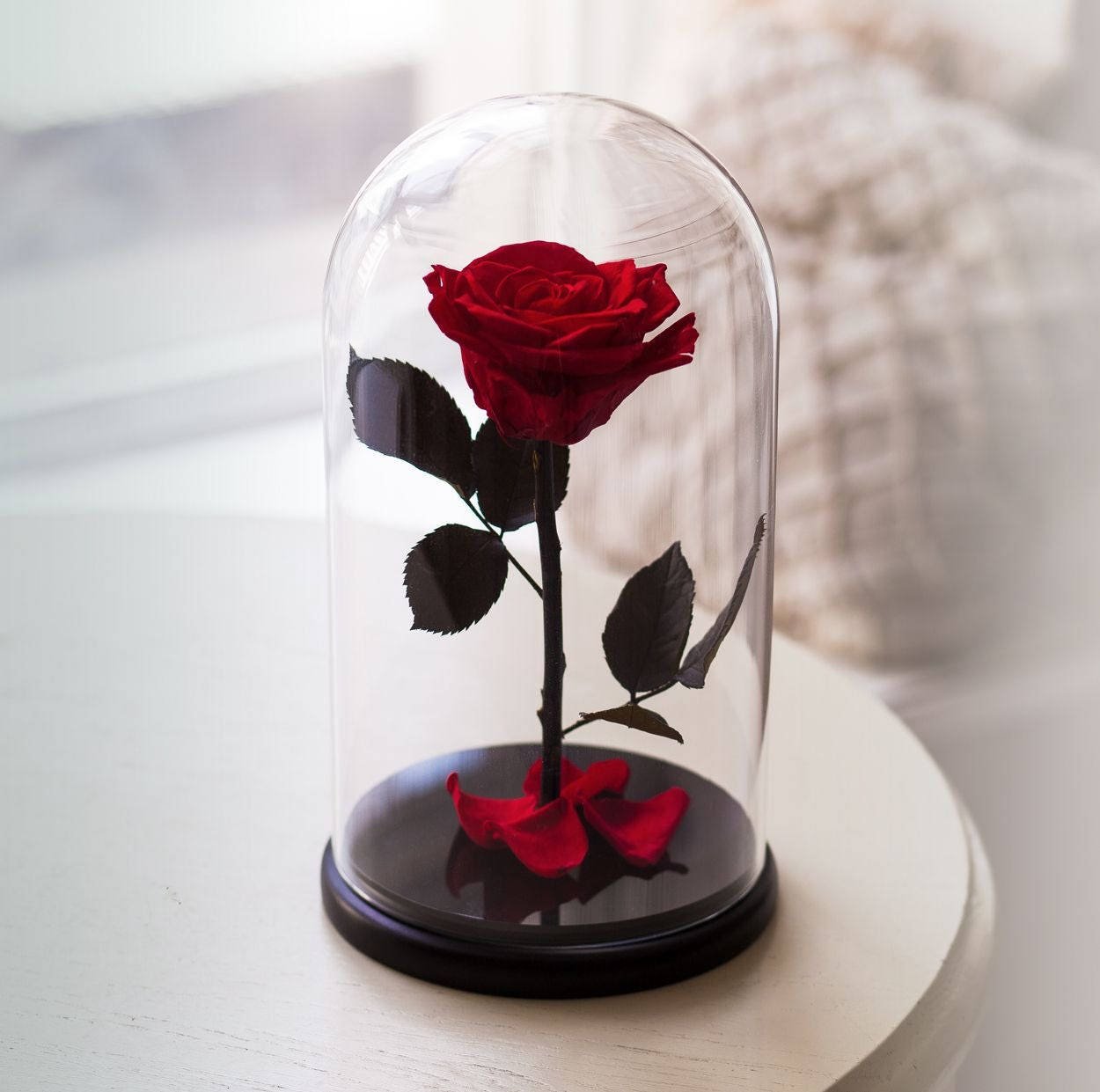 Rose In Glas : beauty and the beast rose live forever rose in glass bella ~ Frokenaadalensverden.com Haus und Dekorationen