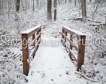 Digital Backdrop w/Snow, Digital Download, Digital Winter Backdrop, Digital Prop, Snow, Christmas Backdrop, Composite Photography, Bridge