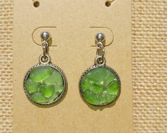 Genuine Sea Glass Cluster Earrings