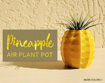 Pineapple Air Plant Holder, Pineapple Airplant, Geometric Air Plant, Air Pineapple Pot, Pineapple Planter Air Pineapple Plant Gold Pineapple