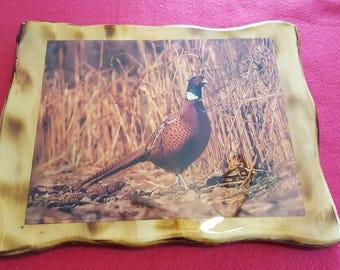 Pheasant Plaque