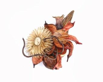 Boho brooch with parts of plants, natural jewelry, gift, birthday, graduation, wedding, Orange home decors-Philemon