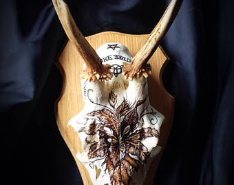 Mandragora roe deer skull and antlers. Hand painted with Mandrake root/Wiccan/decor/unusual gift