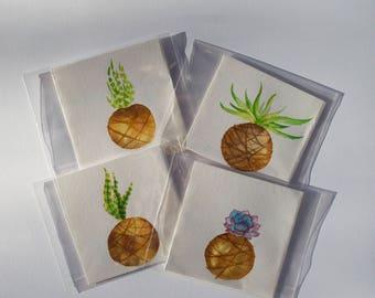 Kokedama Cards