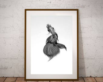 Fish Decor-Tropical Fish Print-Fish Poster-Black and White-Instant Download-Freshwater Fish-Fish gift Idea-Minimalist Print-Modern print