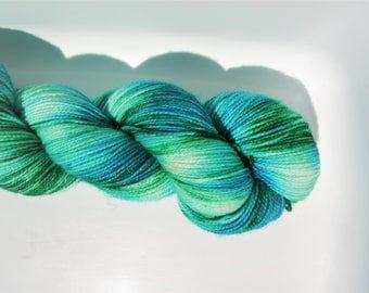 Seeking a friend Stellina Sock Yarn
