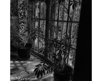 window pencil drawing. fresh morning - black and white graphite pencil drawing, interior with window garden view drawing