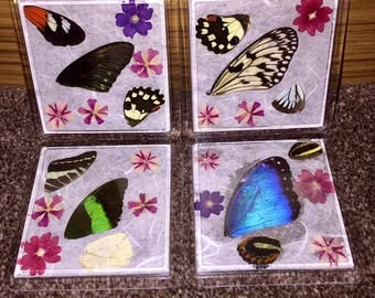 Butterfly wing coasters