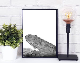 iguana art, iguana decor, iguana gifts, Nursery animal wall decal, nursery animal art, animal art for nursery, nursery animal print