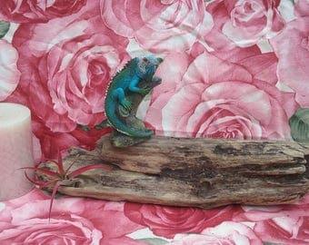 Medium sized piece of Driftwood *Terrarium decorations *Beach Decor *Rustic*Air Plants holder