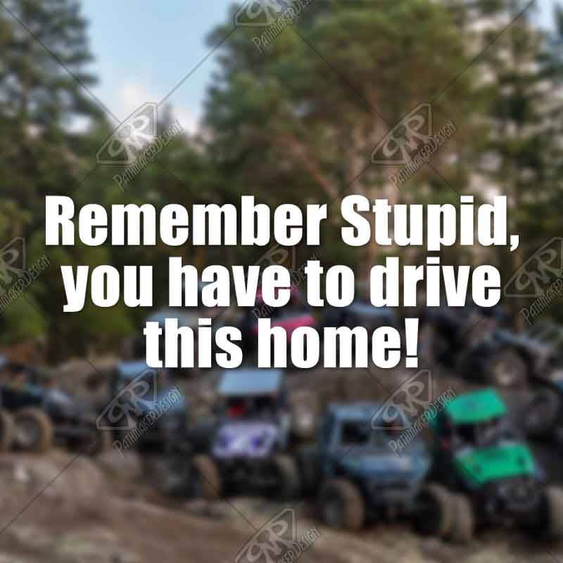 Decal Remember Stupid You Have To Drive This Home